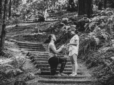 muir woods proposal photography